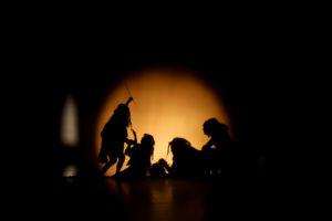Sapiens Principo Attivo Teatro Novoli